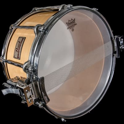 Pearl 8x14'' All Maple Shell Free Floating Snare Drum w/ Extra Shell