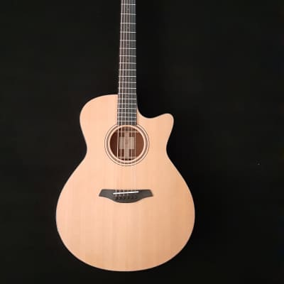 Furch Masters Choice: Blue plus w/LR Baggs SPE 2020 Natural for sale