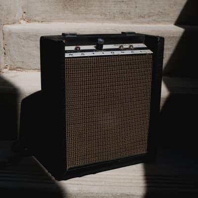 National GAP-2 60's 2 Watt Amp for sale