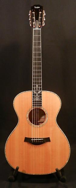 Guitar taylor xxx