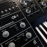 Oberheim OB 1 Analogue Synthesiser - Number 59 - Free EU Shipping