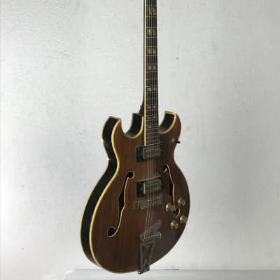 Truetone EG 665-2HR 1967 Brown mahogany for sale