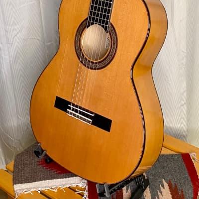 Picado Model 53F Flamenco Guitar Cedar & Cypress w/case *made in Spain for sale