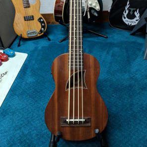 Eddy Finn EF-EBASS Ukulele Bass for sale