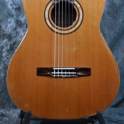 Matthew Morello Custom Classical Acoustic Guitar 05 Cedar & Ziricote w Hard Case & FAST Shipping for sale