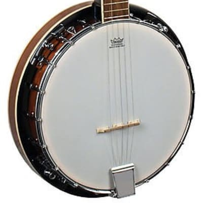 Morgan Monroe Rocky Top RT-B18 18-Bracket Resonator Banjo for sale