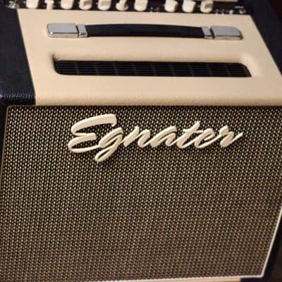 Egnater  Rebel 30 for sale