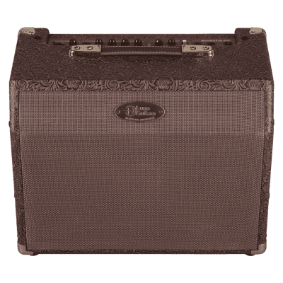 Luna Acoustic Ambience 25W Guitar Amplifier for sale