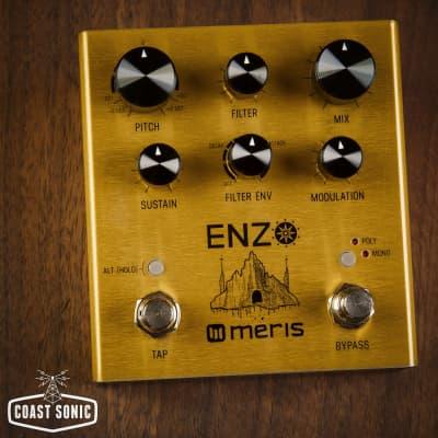 Meris Enzo Multi Voice Instrument Synthesizer
