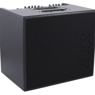 AER Domino 2A Acoustic Combo Amp 100W 2x8 Speaker for sale