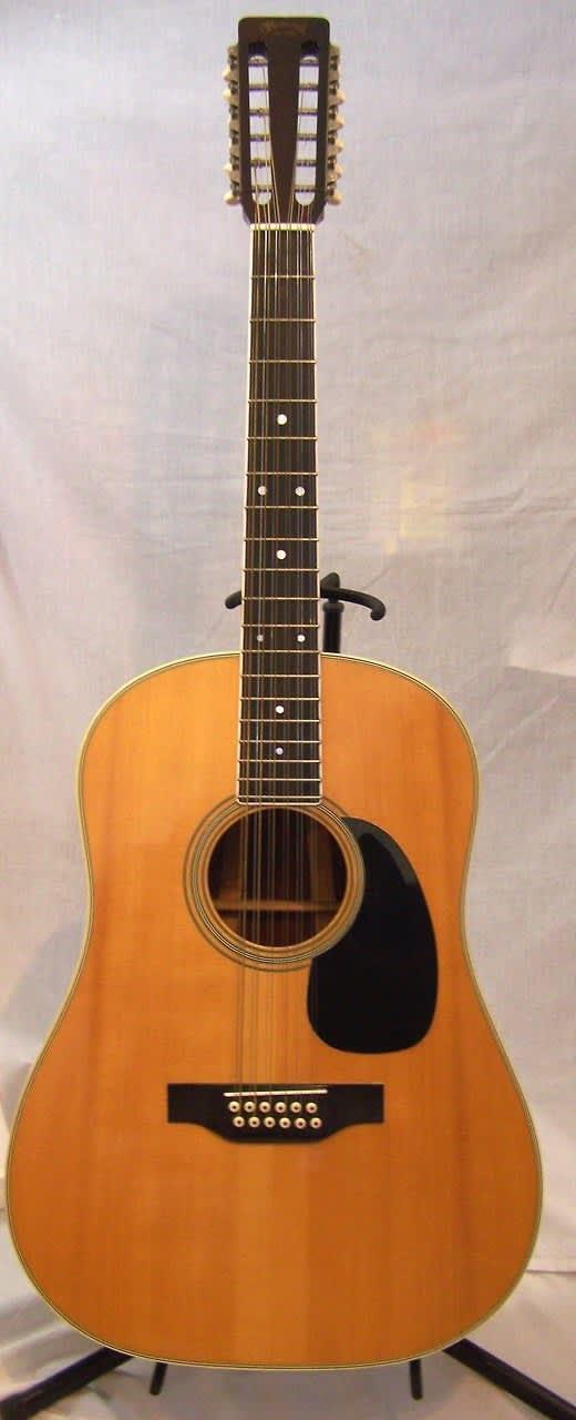 1969 Martin D12-35 w/ hard case | Backwoods Guitar LLC ...