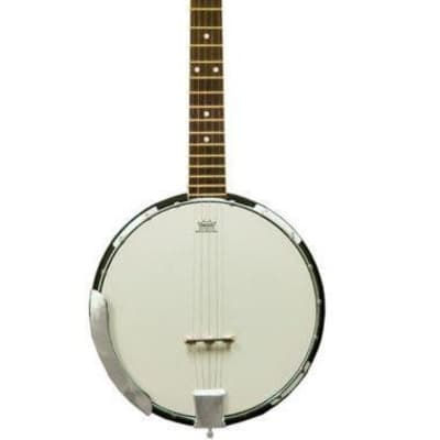 Beaver Creek 5 string banjo for sale
