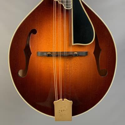 Ellis A-5 Deluxe Mandolin Sunburst for sale