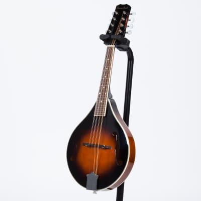 BeaverCreek BCMM201L Mandolin - Left for sale