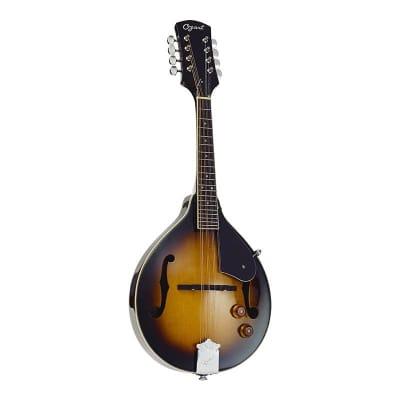Ozark Electric Mandolin A Model for sale
