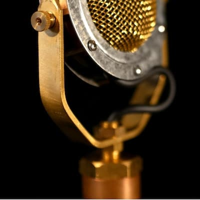 Ear Trumpet Labs - Delphina Microphone
