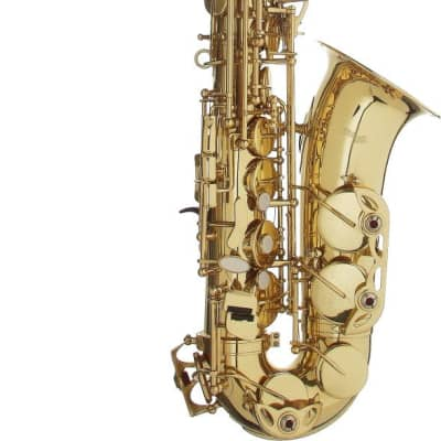 Stagg Eb Alto Saxophone in ABS Case - WS-AS215