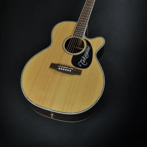 Takamine EG460SC G Series Dreadnought NEX Rosewood Acoustic Electric (343) for sale