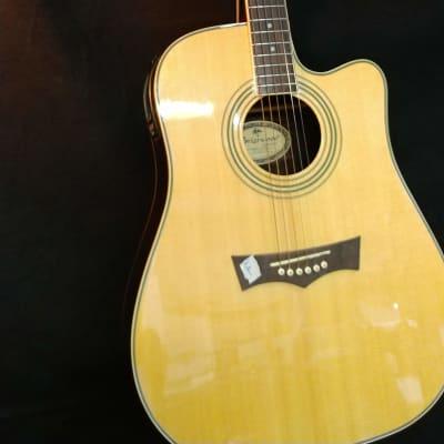 Peavey Briarwood---DR-4CA-EQ-BK Spruce for sale