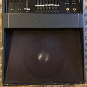 Rare Dan Armstrong  Dan 1 Amp for sale
