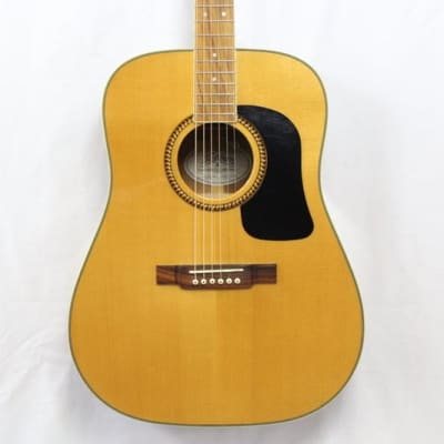 Washburn D10S NAT for sale