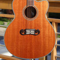 Fishbone Acoustic Jumbo BLK200 Single Cut for sale