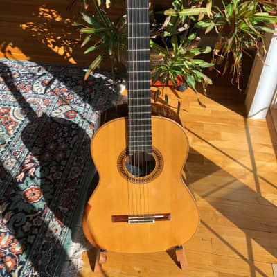 Thames Friederich Style 2014 Rosewood/Spruce for sale