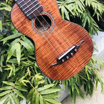 ukc custom hawaiian koa soprano ukulele 2021 with case