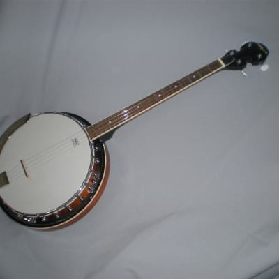 4 String Tenor Banjo for sale