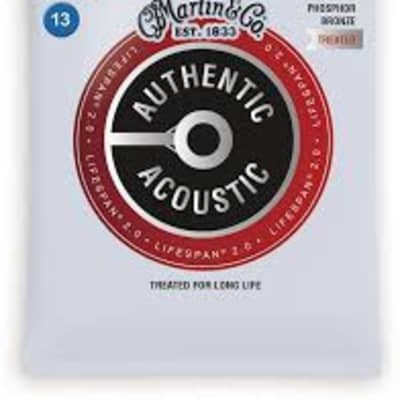 Martin MA550T Lifespan 2.0 Phosphor Bronze Acoustic Guitar Strings, .013-..056