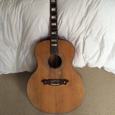 Knight Acoustic Guitar for sale