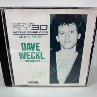 Yamaha RSC3071 Dave Weckl Rhythm Sound Card RY30 RM50 SY/TG rare!