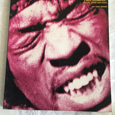 Jimi Hendrix A Visial Documentary - His Life, Loves and Music by Tony Brown Book