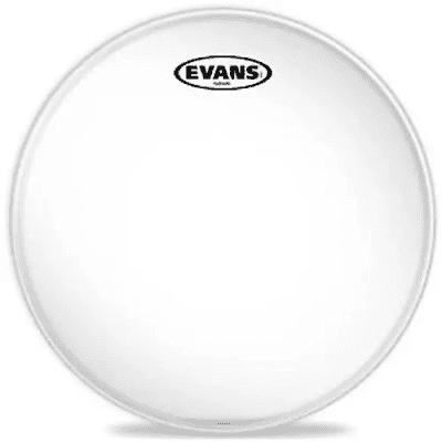 "Evans TT15HG Hydraulic Glass Drum Head - 15"""