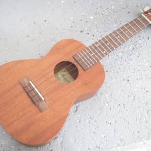Beaver Creek BCUKE-C Mahogany Concert Ukulele with Bag & Pack of Strings for sale