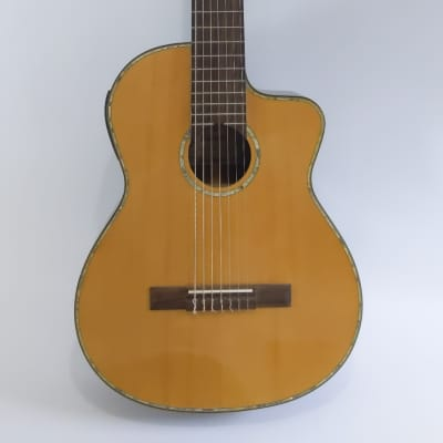 Raines GC720CE Seven String Guitar for sale