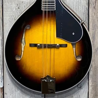 Washburn M1SDLB Bluegrass Series A-Style Mandolin  Sunburst for sale