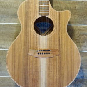 Cole Clark Angel 2EC Blackwood Blackwood with Hard Case for sale