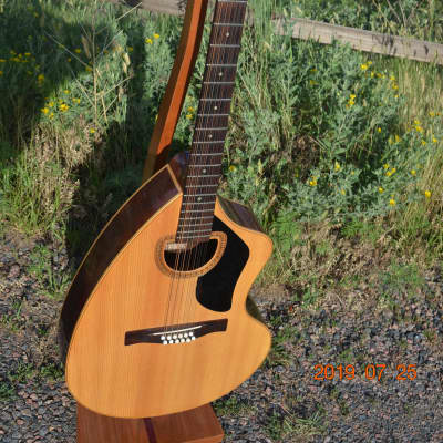 Giannini Craviola AWKS12  12 string Guitar 1974 for sale