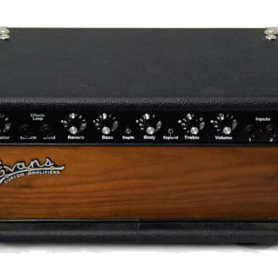 Evans Custom Amplifiers E200 Solid State Amplifier Head for sale