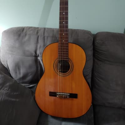 Electrified - Kingston Pro-Line Classical N3 1960's - See Video! Truss Rod! MIJ for sale