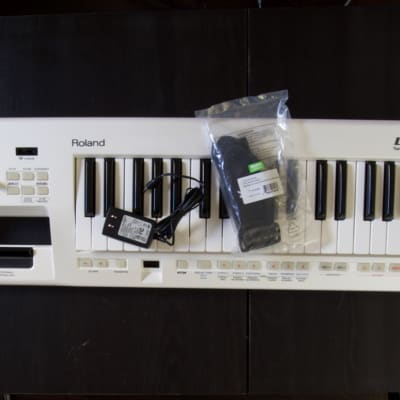Roland AX-09 Lucina Keytar bundle with cable, power supply, strap: All you need to take the stage
