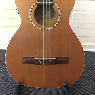 Art & Lutherie Ami Nylon Cedar QI Compact - with cosmetic issue..and gigbag! for sale