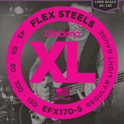 D'Addario EFX170-5 FlexSteels 5-String Bass Guitar Strings, Light Gauge