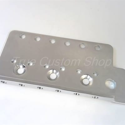 "True Custom Shop 2 1/16"" Tremolo Plate for Fender Mexican Standard Strat"