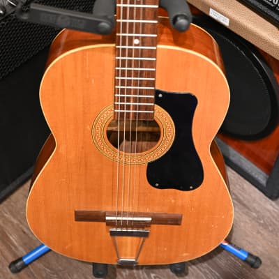 (D10394) Audition Acoustic for sale