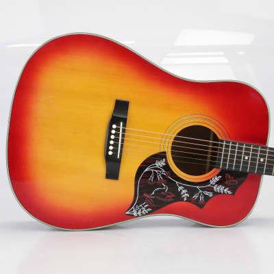 Synsonics Hummingbird Acoustic Guitar Sunburst w/ Hard Shell Case #40768 for sale