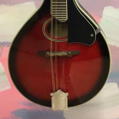 Tenson Mandolin for sale