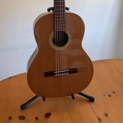 Orpheus Valley Sofia SC Nylon Guitar for sale