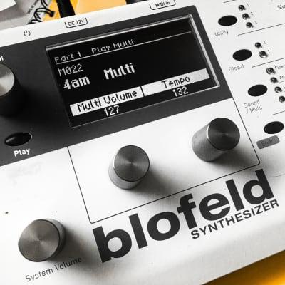 LED Display Upgrade - Waldorf Blofeld / Pulse ll Custom (white on black)